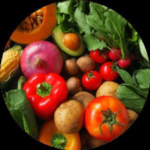 沢山の種類の野菜の画像